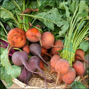 Beets by La Grande Farmers' Market