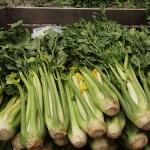 Celery by Elisabets