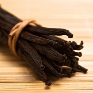 Vanilla (Vaniglia) (Vanilla planifolia)