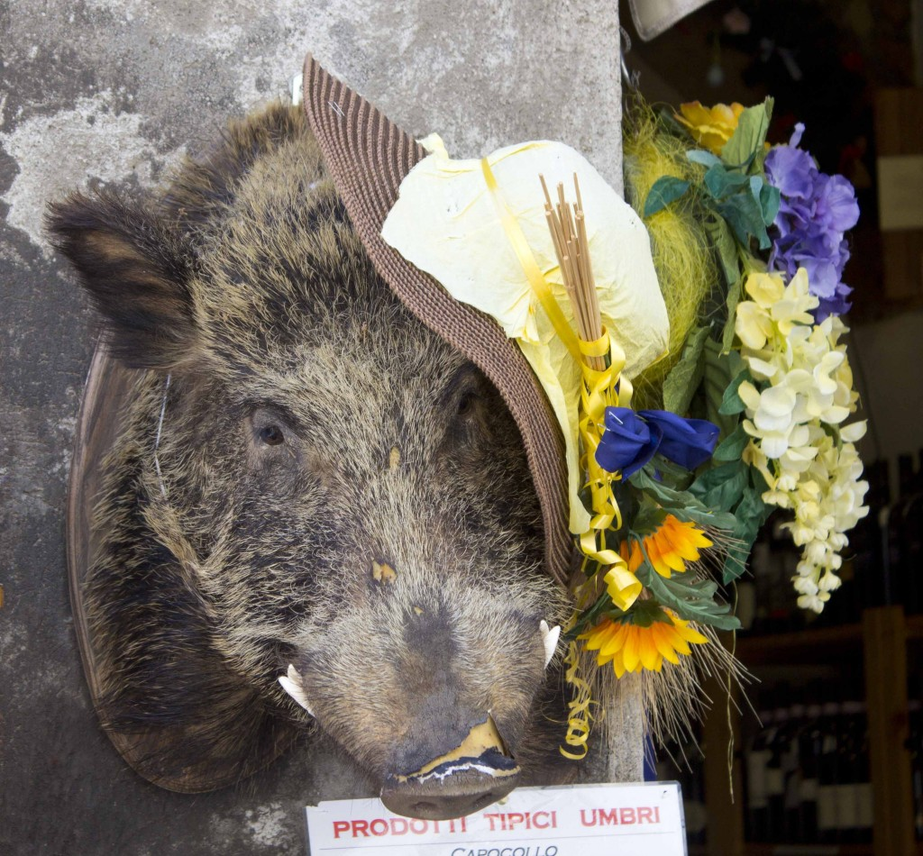 Wild boar head outside a shop, indicating they sell salami