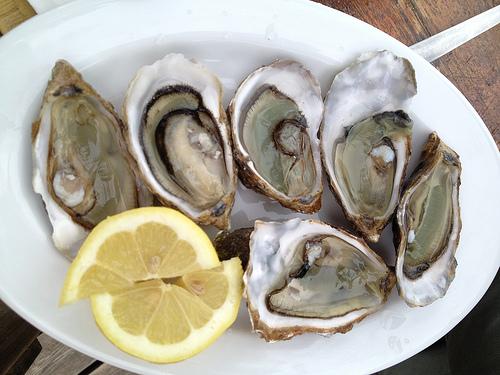Oysters by Federica Piersimoni