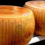 Parmigiano Reggiano cheese by Desiree Tonus