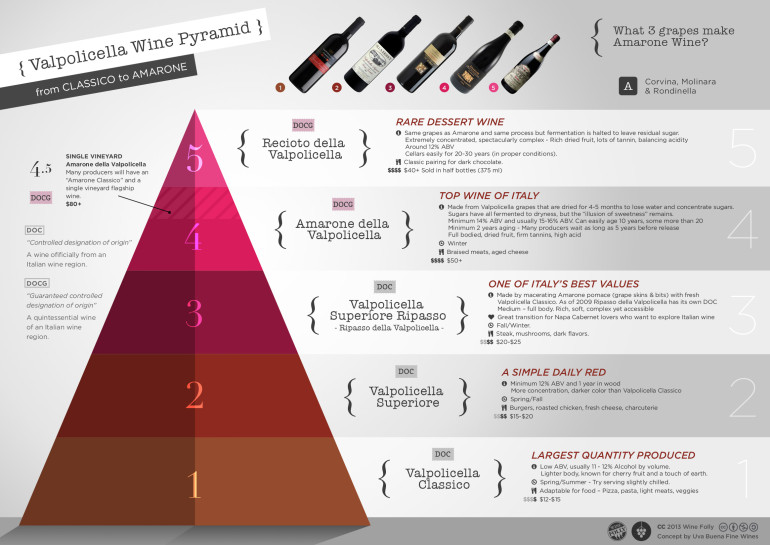 Valpolicella Amarone wine classification pyramid by Wine Folly