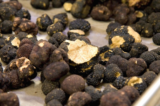 Black truffles by Fulminating