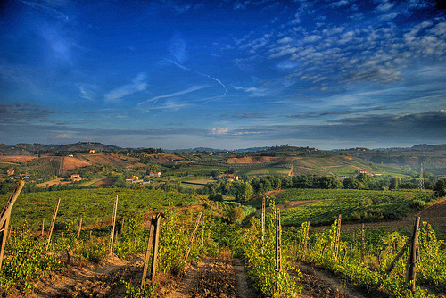 Chianti Country in Tuscany by Francesco Sgroi