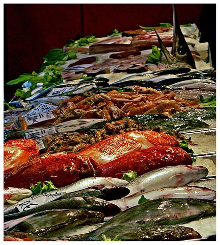 Fish at Rialto Market, Venezia by Eugenio