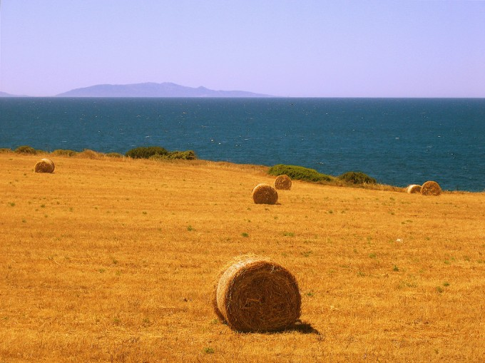 Sardinian countryside