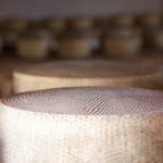 Shelves of pecorino