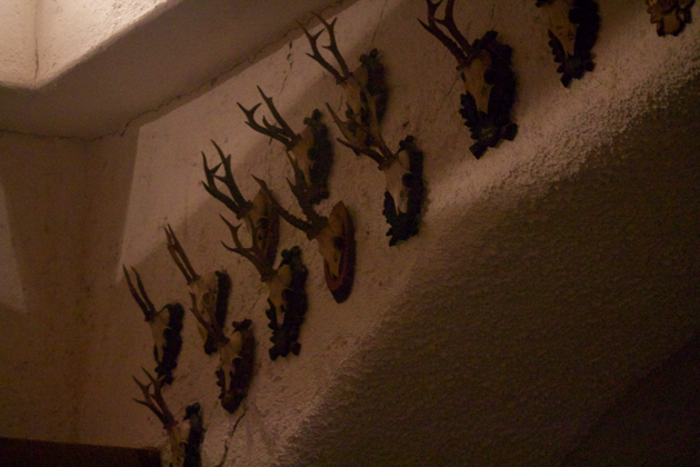 Deer antlers adorning the walls of the large barrel room