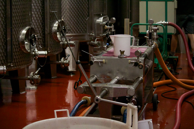 Filtering the wine