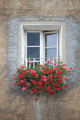 Window in Bressanone