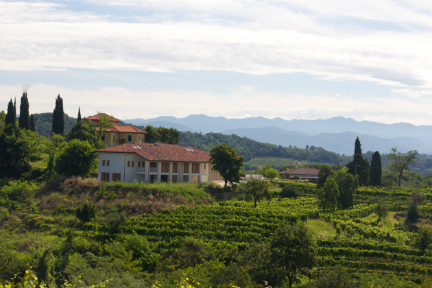 Scenery around Rosazzo