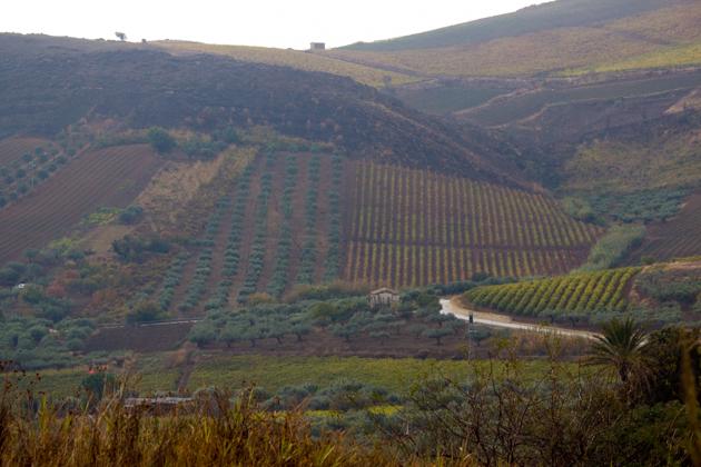 Valle del Belice