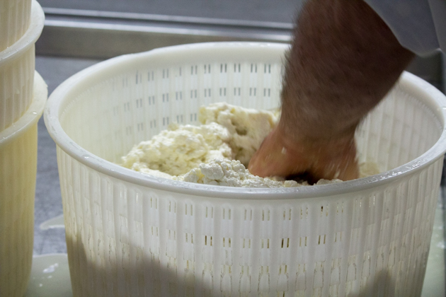 Placing the curd in the mould