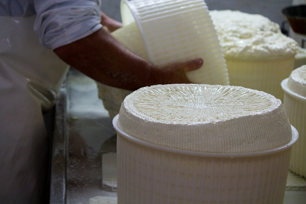 Turning the curd in the basket