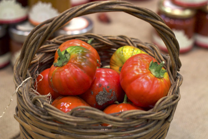 Tomatoes from Basilicata
