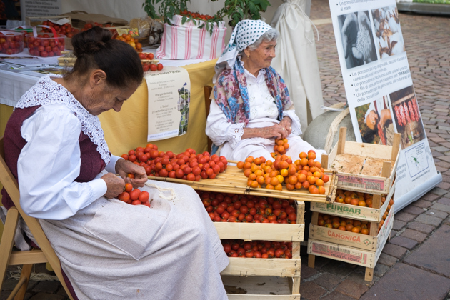 Puglian ladies tying tomatoes into bunches