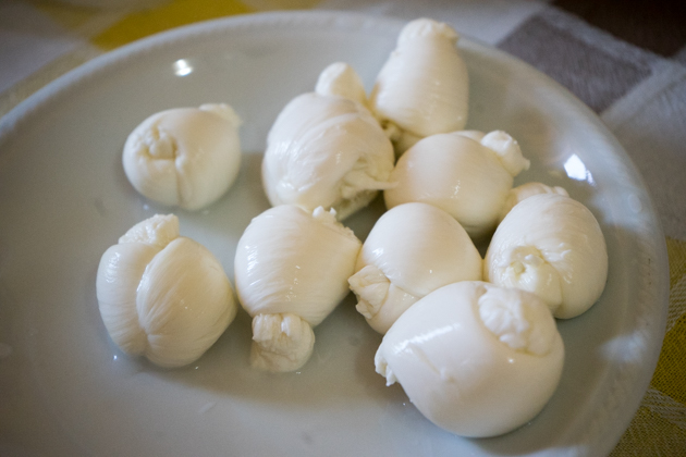 Mozzarella knots