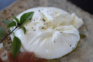 Burrata by Cathy Arkle
