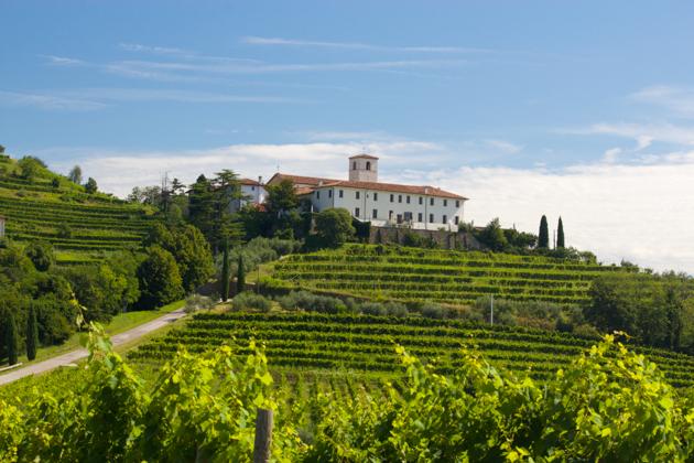 Countryside in Friuli