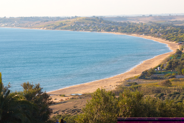 The olives have a spectacular view of the sea