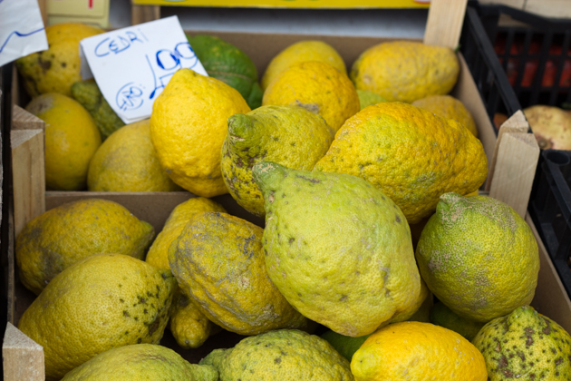 Perfect specimens of citron, known as etrog in Hebrew, can command huge sums during the Jewish festival of Sukkot