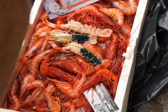 Blood red prawns